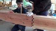 expert japanese carpenters