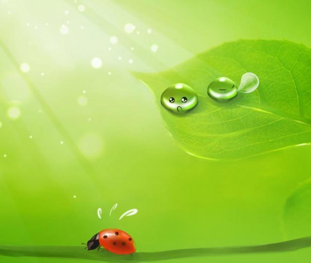 Green Wallpaper