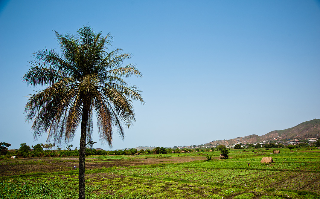 Contemplate The Rich Landscape Of Sierra Leone This Beautiful Territory Of West Africa