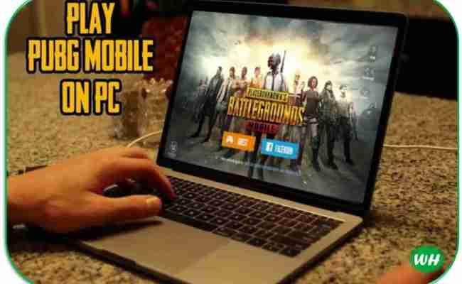 Pubg For Pc Free Download Windows 7 8 10 Full Version Game