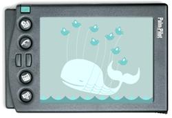 palm-twitter