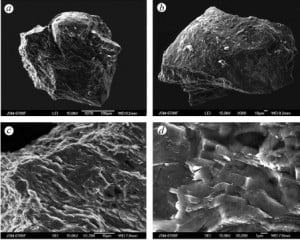 SEM images of the Tunguska diamond-lonsdaleite-graphite intergrowths with natural rounded surface. Credit: Planetary and Space Science, http://dx.doi.org/10.1016/j.pss.2013.05.003