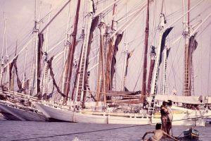 A schooner sailing vessel