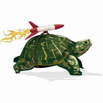 Fast Tortoise