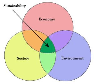 A possible sustainability diagram?