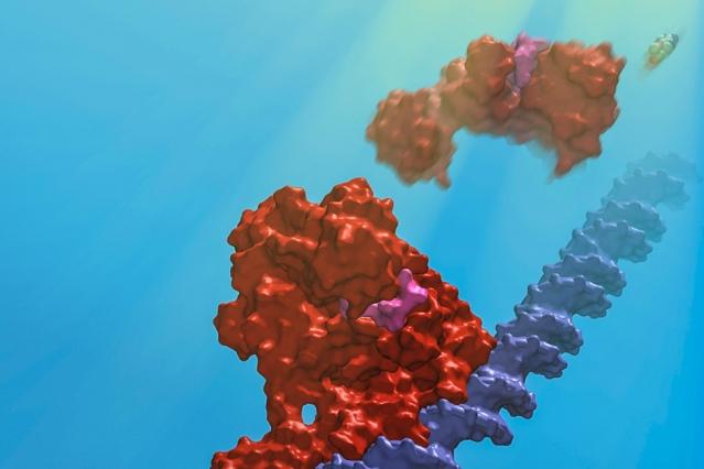 MIT-Proteins-Light-2.jpg