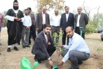 "To mark World Forest Day IST celebrate event ""Tree Legacy"""