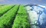 Nanotechnology: For sustainable agriculture and a solution for environmental issues
