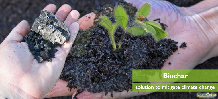 The integrated solution strategy is application of biochar in soils that can reduces GHG and captured gas emissions