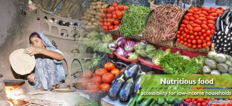Nutritious food accessibility for low-income households