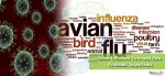 Avian Influenza Virus and their Economic Importance
