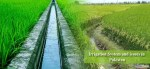 Irrigation System and issues in Pakistan