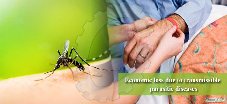 Economic loss due to transmissible parasitic diseases