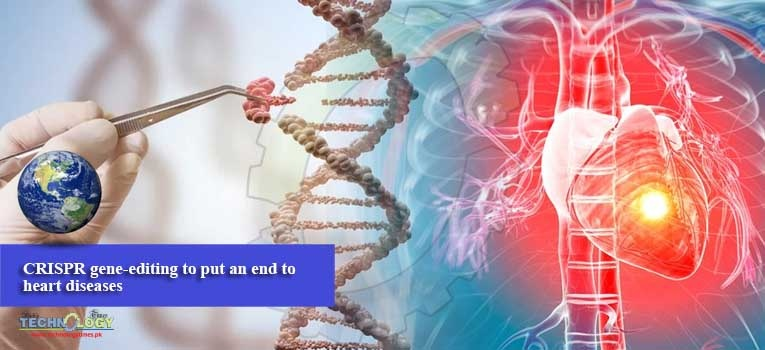CRISPR gene-editing to put an end to heart diseases