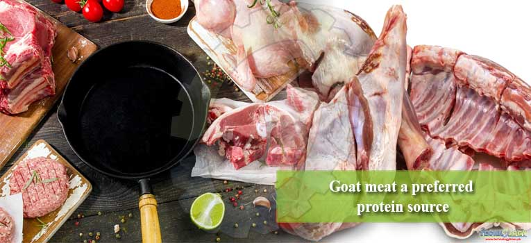 Goat meat a preferred protein source