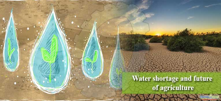 Water shortage and future of agriculture