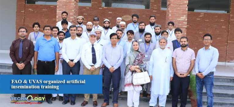 FAO & UVAS organized artificial insemination training