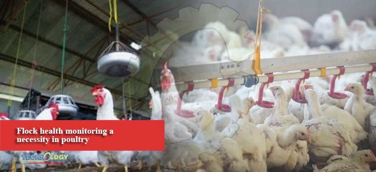 Flock health monitoring a necessity in poultry