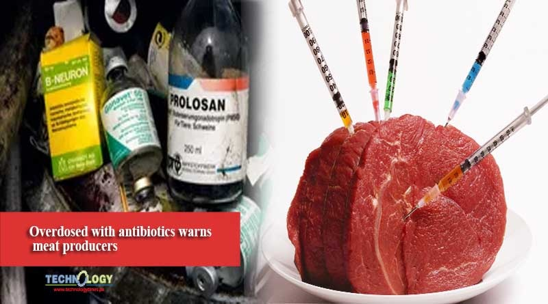Overdosed with antibiotics warns meat producers