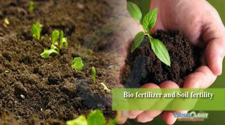 Bio fertilizer and Soil fertility