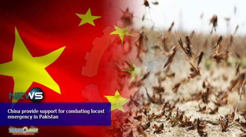China provide support for combating locust emergency in Pakistan