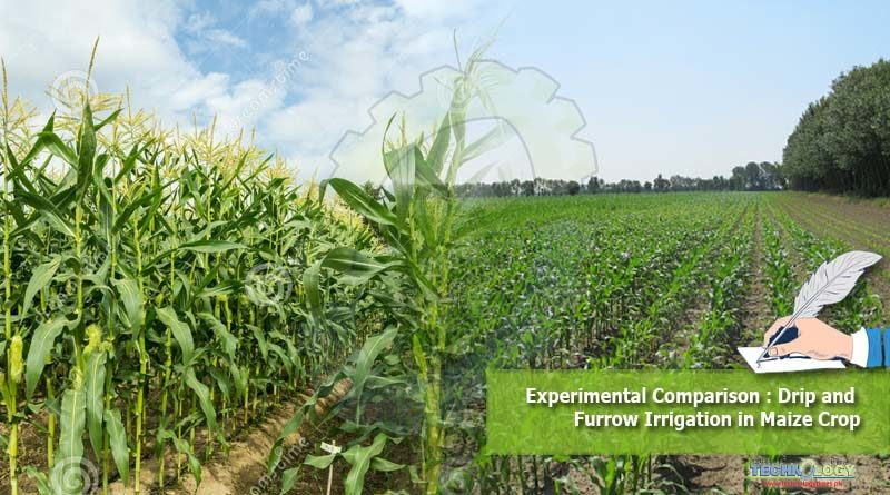 Experimental Comparison : Drip and Furrow Irrigation in Maize Crop