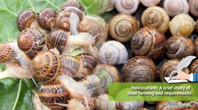 Heliciculture; A brief study of Snail farming and requirements