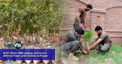 NTDC Plants 5000 saplings and trees in different Power grids Stations in Punjab