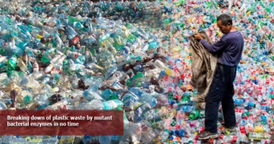 Breaking-down-of-plastic-waste-by-mutant-bacterial-enzymes-in-no-time