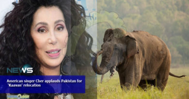 American singer Cher applauds Pakistan for 'Kaavan' relocation