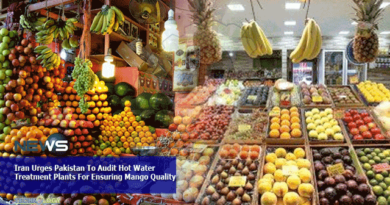 Iran-Urges-Pakistan-To-Audit-Hot-Water-Treatment-Plants-For-Ensuring-Mango-Quality.