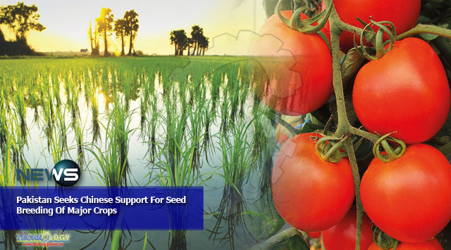 Pakistan Seeks Chinese Support For Seed Breeding Of Major Crops