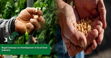 llegal Embargo on Development of local Seed Industry