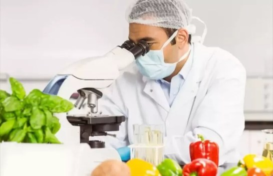 Easy to Start Good Career in Field of Food Technology | Course 2021