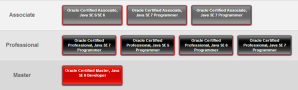 Technical Certifications of Oracle Technologies