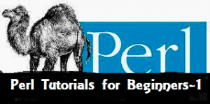 Perl Scripting Tutorial For Beginners (Introduction, Installation and basic programs) (Part 1)