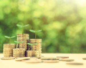 Incentive-schemes