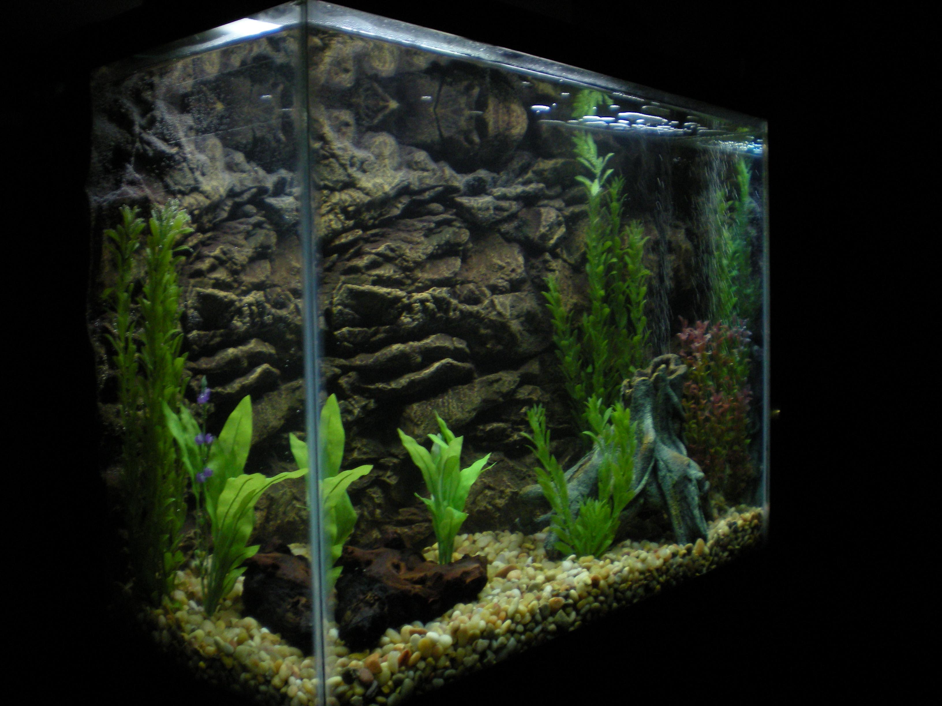 3d Wallpapers Buy Online 33 Attractive Aquarium Background Technosamrat