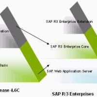 SAP stands
