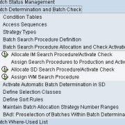 Batch Management Configuration in SAP MM