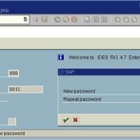 SAP Password for Database