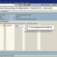 SAP Down Payment Process