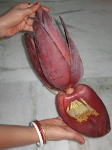 Banana Flower Dish Recipe