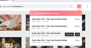 Download Online Videos Flash