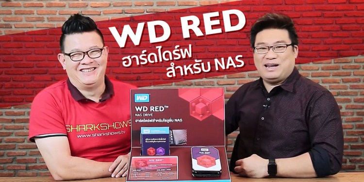 WD RED NAS Harddisk Review