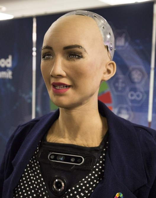 'Sophia' a wise (AI) human-like robot created by Hong Kong-based humanoid apply autonomy organization Hanson Robotics is envisioned amid the 'artificial intelligence for Good' Global Summit. New advancements have empowered Sophia