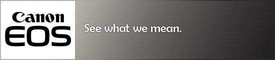 See what we mean slogan