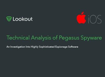Lookout_Pegasus_Report