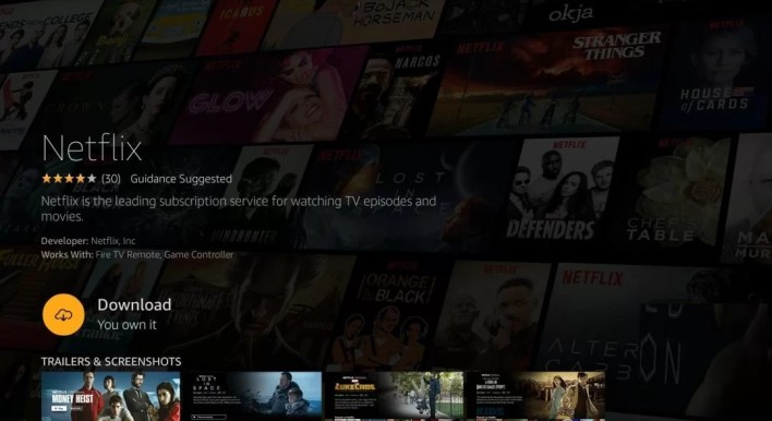 How to Install Netflix on Firestick?