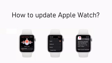 Update Apple Watch